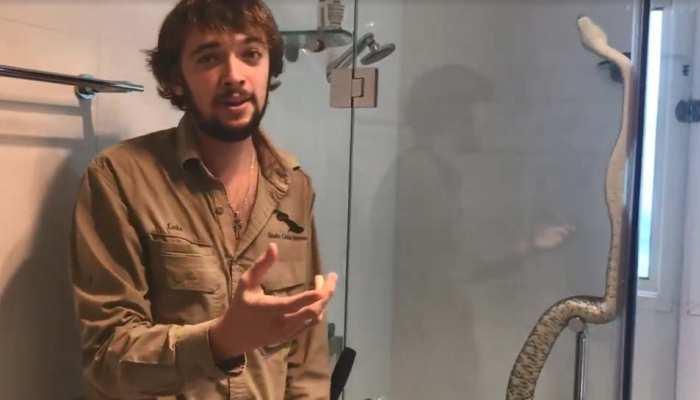 VIDEO: बाथरूम में Shower के मजे ले रहा था 7 फुट का अजगर, मालिक ने खोला दरवाजा फिर...