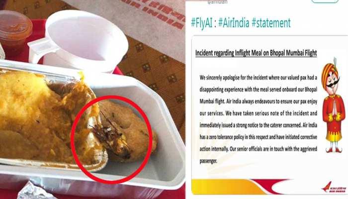 खाने में कॉकरोच मिलने पर यात्री ने कहा- 'सिर्फ माफी नहीं, एक्शन ले AIR INDIA'