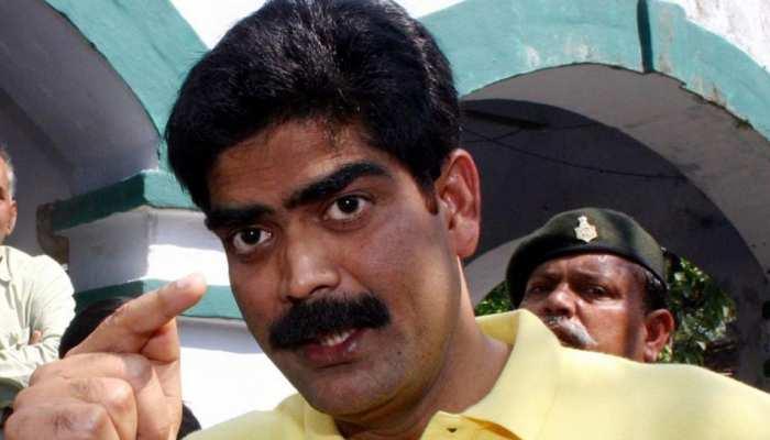 सीवान लोकसभा सीट : एक निर्दलीय प्रत्याशी ने 2009 के चुनाव में शाहबुद्दीन को दी थी मात