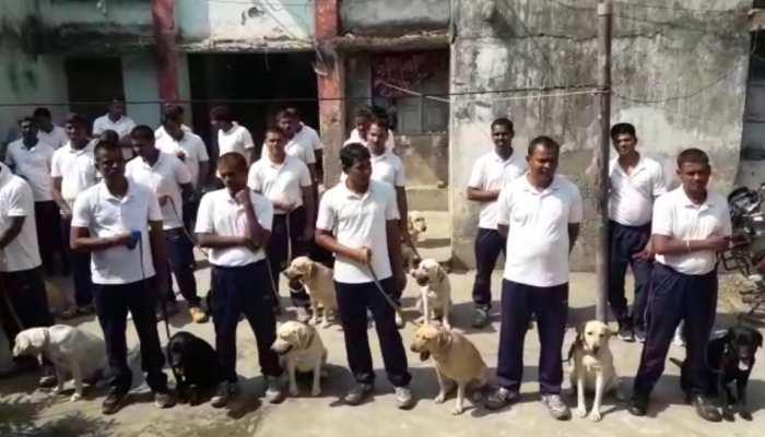 शराबबंदी को सफल बनाने के लिए बिहार पुलिस लेगी डॉग स्क्वायड की मदद, 20 कुत्ते ट्रेनिंग से लौटे