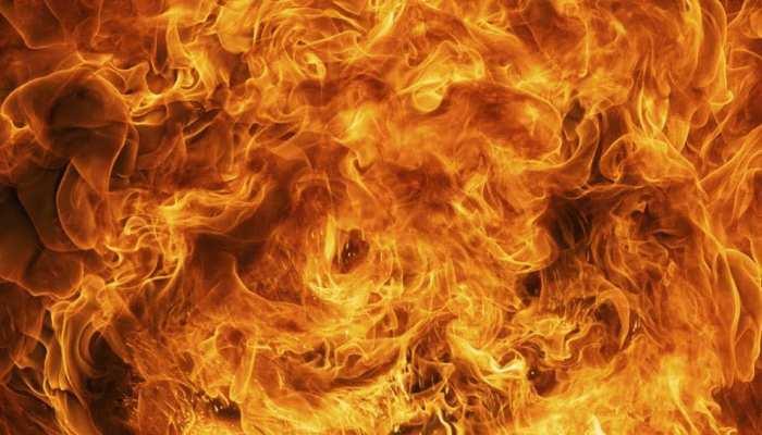 पहले खेत की फसल में लगाई आग, जब लपटें हुई तेज तो 85 साल के बुजुर्ग किसान ने लगा दी छलांग