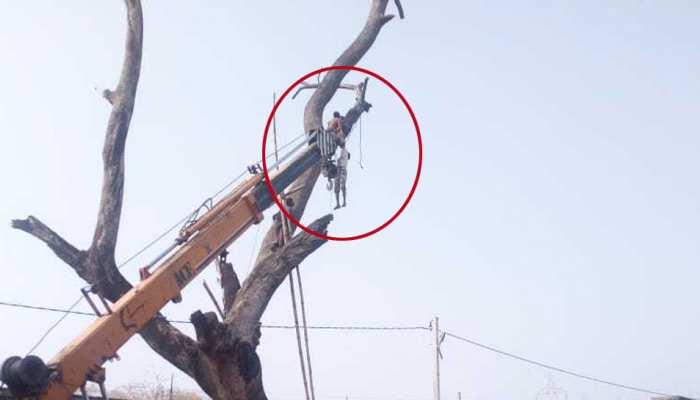 झारखंड : तोता निकालने के क्रम में फंस गया युवक का हाथ, 40 मिनट तक पेड़ से झूलता रहा