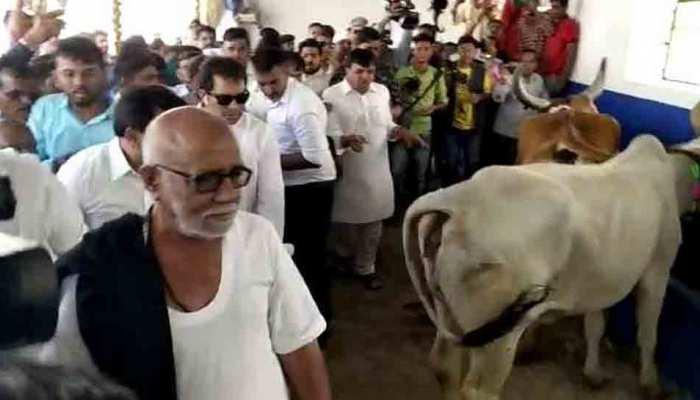 गुजरात: पहली बार दरगाह में हुआ गौशाला का निर्माण, घर-घर गाय पालने का दिया संदेश