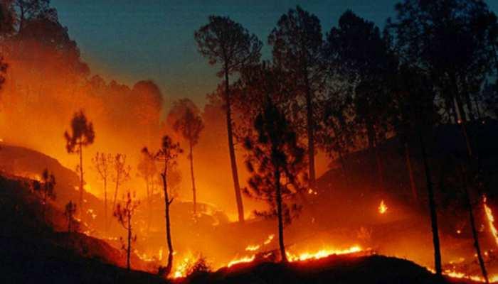 गुमला के जंगलों में लगी भीषण आग, पेड़ और औषधियों के जलने से ग्रामीणों में आक्रोश
