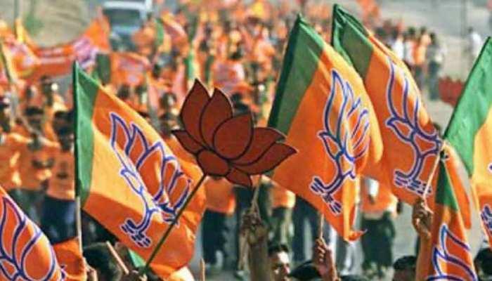 लोकसभा चुनाव: यूपी की एकमात्र सीट जहां पिछले 28 साल से काबिज है BJP