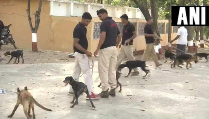 MP पुलिस के डॉग स्क्वायड में शामिल किया गया वह कुत्ता, जिसकी वजह से मारा गया था लादेन