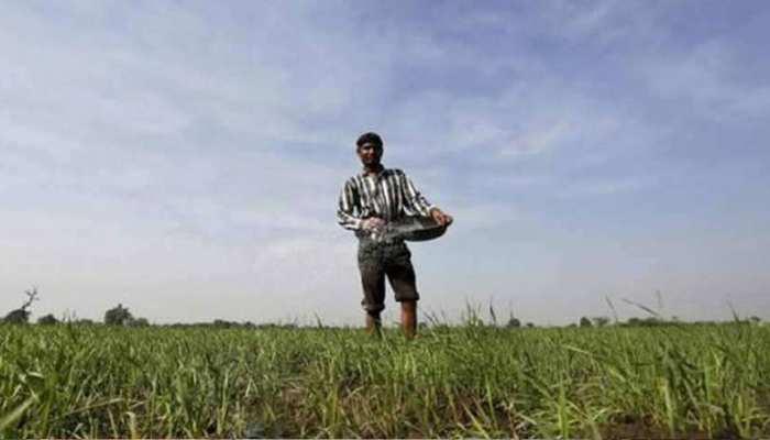 राजस्थान: लोन लेने पर नहीं टूटेगी किसानों की उम्मीद, वेब पोर्टल बताएगा कितना मिलेगा ऋण
