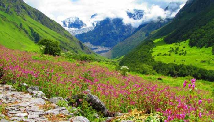 आज से पर्यटकों के लिए खुल गई फूलों की घाटी, जानें कितना हो प्रवेश शुल्क