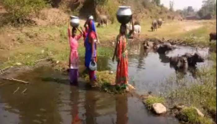 लातेहार: अधिकारियों की लापरवाही से आदिवासी समाज विवश, पीना पड़ रहा है नाले का पानी