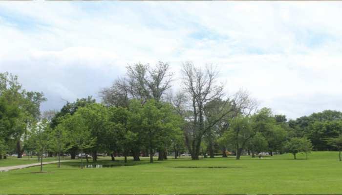 शहर के लोगों को प्रकृति से जोड़ने में सहायक होंगे 'पॉप अप पार्क'