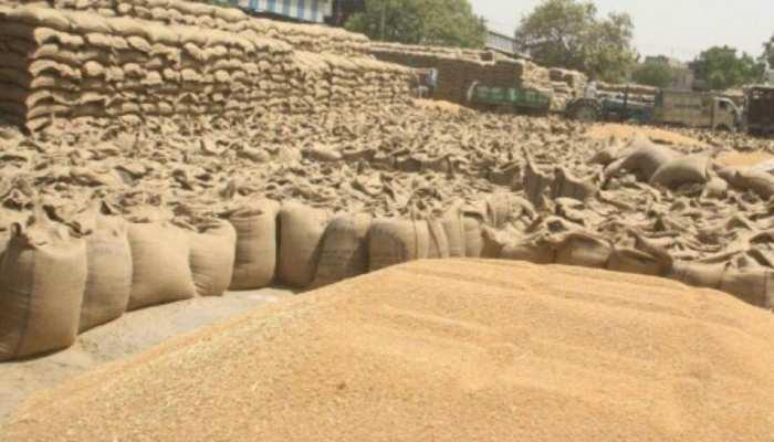 बिहार : 7 जिलों में किसानों के पास पड़ा है गेहूं, सरकार की बेरुखी से बिचौलियों की चांदी