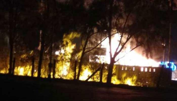 कौशांबी में यूकेलिप्टस के पेड़ों में लगी आग, 35 पेड़ जलकर राख, किसान ने बताया साजिश
