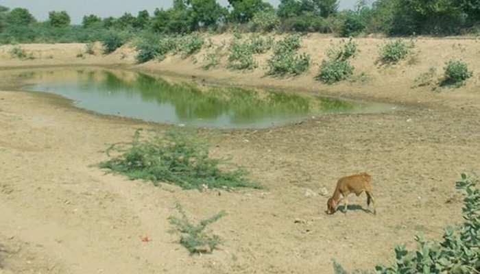 डिंडौरी में नहीं कम हो रहा जल संकट, गांवों में लोग नदी में खुदाई करके कर रहे हैं पानी का इंतजाम