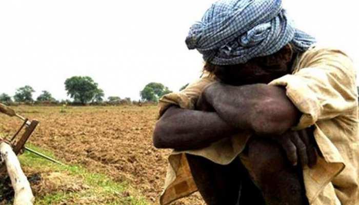 गाजीपुर:  UP की मिट्टी से गायब हो रही नाइट्रोजन, बंजर होने के कगार पर खेत!