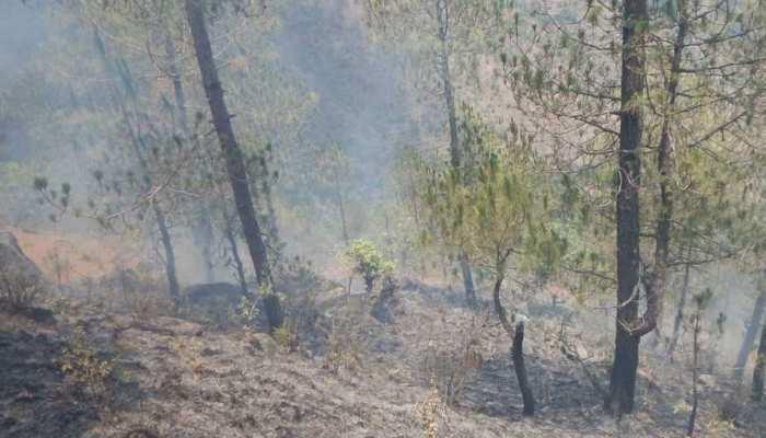 चाईबासा: सारंडा में वन माफियाओं के खिलाफ छापेमारी करना पड़ा महंगा, ग्रामीणों ने किया हमला