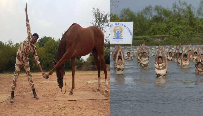 ITBP के जवानों ने पानी के भीतर तो BSF के जवानों ने घोड़े पर सवार होकर किया योग