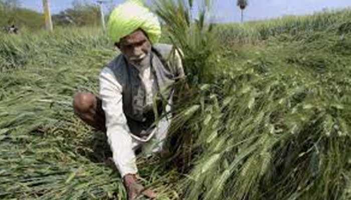 राजस्थान: ऋण माफी योजना 2019 में नहीं आने वाले किसानों को समय पर चुकाना होगा कर्ज
