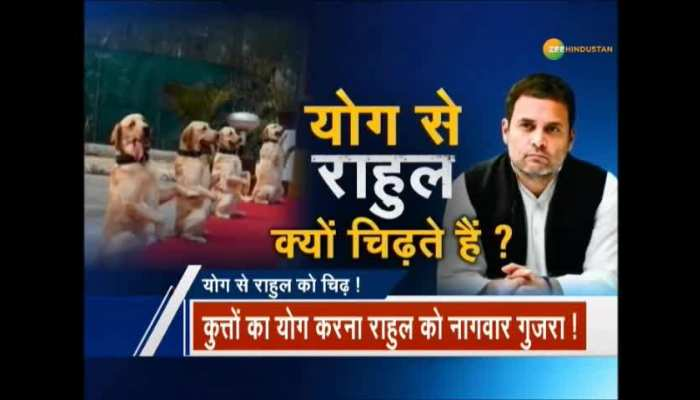 Does Rahul Gandhi not support Yoga ?