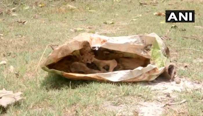 मुजफ्फरपुर : SKMCH में मिला कंकाल, अधीक्षक बोले- मामले की होगी जांच
