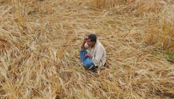 डूंगरपुर: किसानों के कर्जमाफी में गड़बड़ी की जांच जारी, मंत्री ने देरी पर जताई नाराजगी