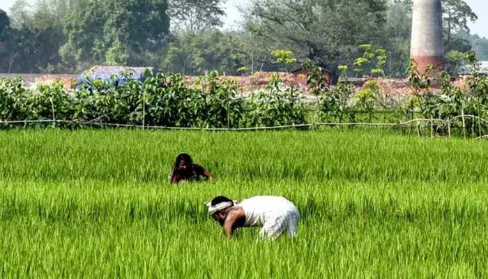 झारखंड : 5 लाख किसानों के खाते में 'सम्मान निधि' के तहत भेजे गए 2-2 हजार रुपये