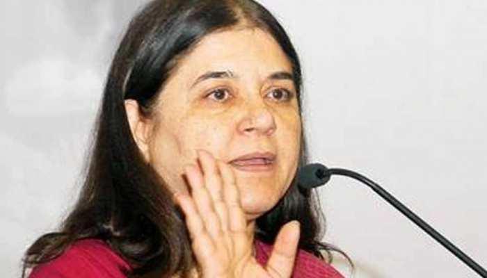 सुल्तानपुर में बोलीं मेनका गांधी, 'निजी अस्पताल चलाने वाले सरकारी डॉक्टरों के खिलाफ होगी कार्रवाई'