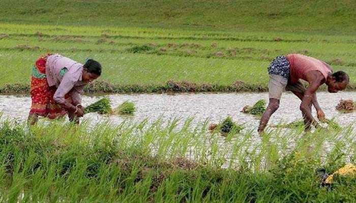 मध्य प्रदेशः विपक्ष ने कर्जमाफी पर उठाए सवाल, मंत्री जी बोले- वचन की पक्की है कमलनाथ सरकार