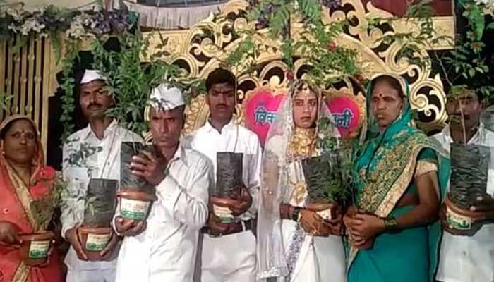 एक किसान ने की बेटी की आनोखी शादी, बारातियों को तोहफे में दिए 1000 नीम का पौधा