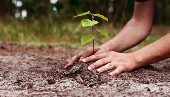 उदयपुर के इस समाजसेवी ने पर्यावरण संरक्षण के लिए उठाया कदम, गांव लिया गोद