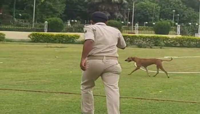 बिहार विधानसभा में आवारा कुत्तों को भगाने के लिए सीएम नीतीश कुमार को देना पड़ा आदेश