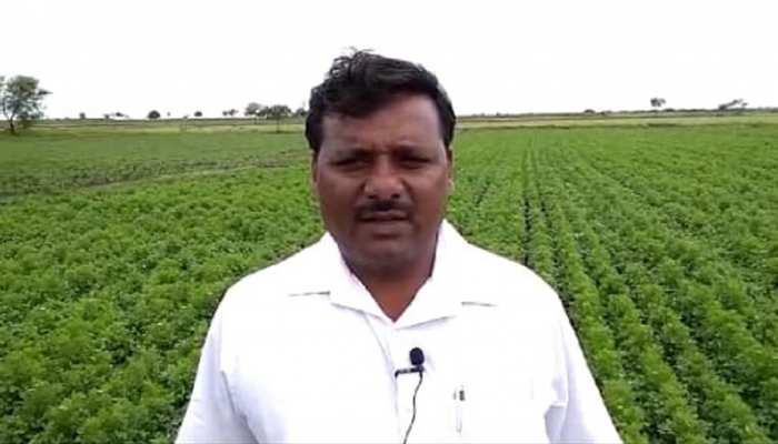 देश के लिए मिशाल बना महाराष्ट्र का यह किसान, कम पानी में उगाई लाखों की फसल