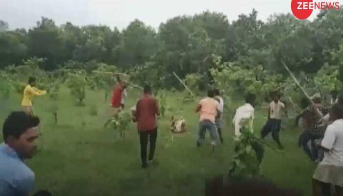 VIDEO : पीलीभीत में गांववालों ने बाघिन को डंडे से पीट-पीटकर मार डाला, 43 लोगों पर केस दर्ज