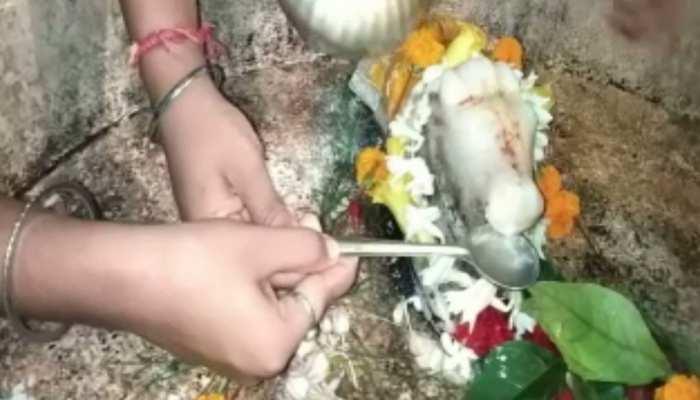 घाटशिला के इस मंदिर में नंदी ने पिया जल, देखते-देखते उमर पड़ी श्रद्धालुओं की भारी भीड़