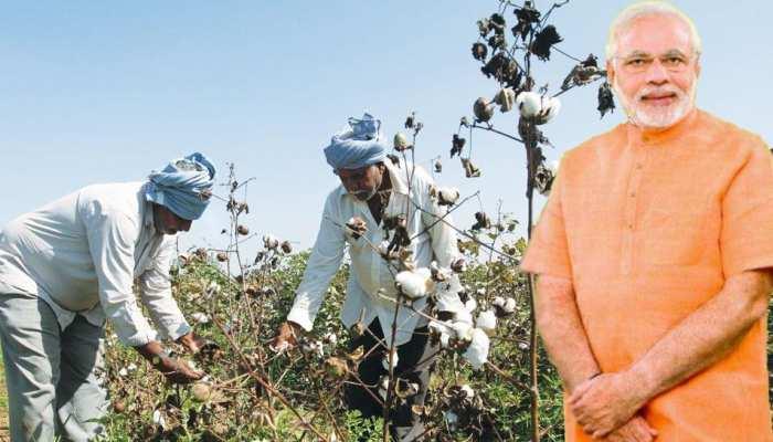 PM मोदी ने 13 साल CM रहते हुए जिन किसानों को बनाया मालामाल, अब क्यों हो रहे बेहाल?