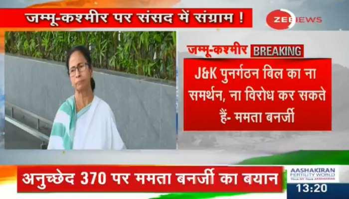 हम कश्मीर से अनुच्छेद 370 हटाने का न विरोध करते हैं और न ही समर्थन : ममता बनर्जी
