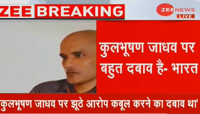 कुलभूषण मामले में भारत का बयान - मुलाकात के दौरान जाधव दबाव में दिख रहे थे