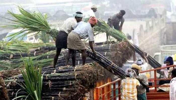 गन्ना किसानों के लिए खुशखबरी, मोदी सरकार ने बढ़ाई एथेनॉल की कीमत