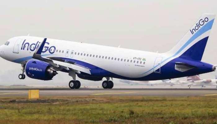 टल गया बड़ा हादसा, टेक-ऑफ के दौरान IndiGo के विमान से टकराया पक्षी, सभी यात्री सुरक्षित