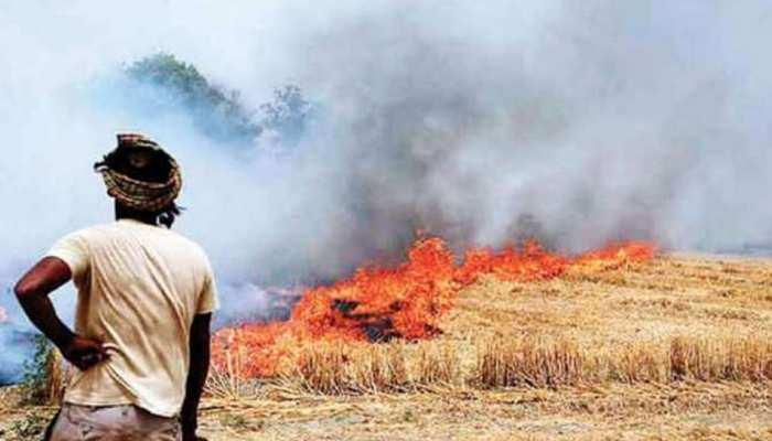 पंजाब में पराली जलाने की समस्या से निपटने के लिए तैयारी शुरू, किए हैं कड़े इंतजाम