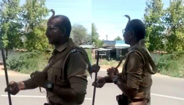 VIDEO: पेड़ से लटक रहा था सांप, पुलिसकर्मी ने पूंछ से पकड़ा तो सिर पर जा बैठा और फिर...