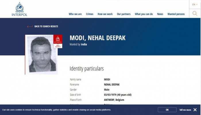 PNB घोटाला: नीरव मोदी के भाई के खिलाफ इंटरपोल ने जारी किया रेड कॉर्नर नोटिस
