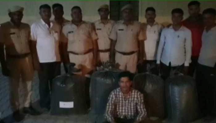 जोधपुर पुलिस ने 79.400 ग्राम अवैध डोडापोस्त किया बरामद, आरोपी को किया गिरफ्तार