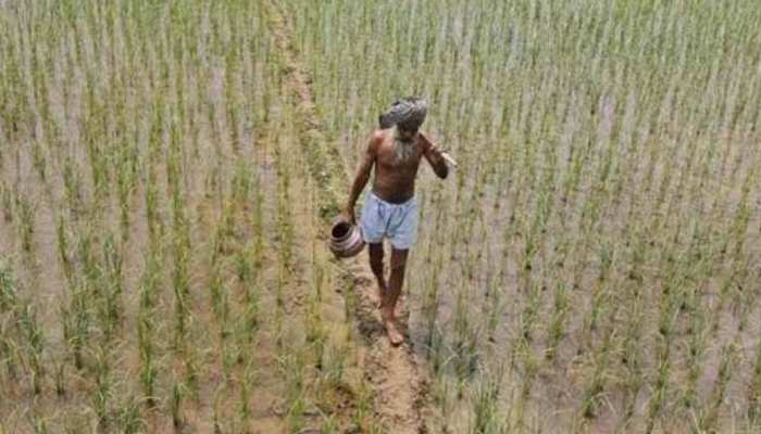 कहीं सूख ना जाए अनाज का कटोरा, अलार्मिंग सिचुएशन से गुजर रही है पंजाब की मिट्टी