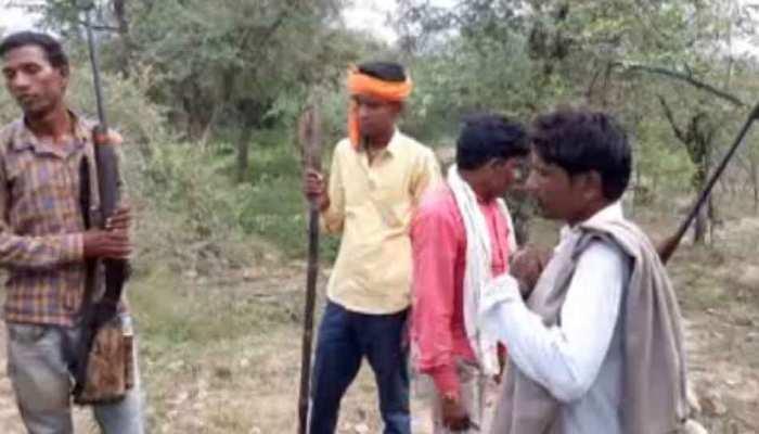 मुरैना में गाय-भैसों की किडनैपिंग के बाद बदमाशों की तलाश में हथियार लेकर जंगल पहुंच गए सैकड़ों ग्रामीण