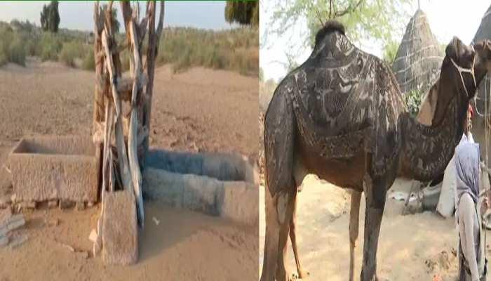राजस्थान: जहां रहते हैं केवल गधे और ऊंट, नहीं रहता कोई इंसान, वहां बना दिया पंचायत मुख्यालय