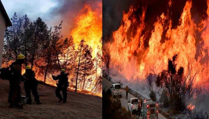 कैलिफोर्निया: जंगलों में आग पर काबू पाने के प्रयास जारी, अब तक 7,552 एकड़ जंगल जला