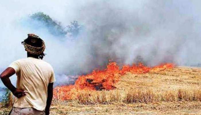 खेतों में पराली को जलाकर नहीं गलाकर भी समस्या से निजात मिल सकती है
