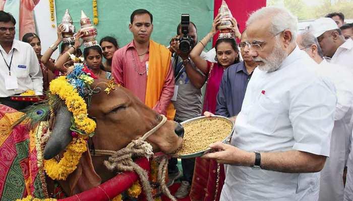 1 गाय साल में करीब 2,000 किलो देती है दूध, PM मोदी ने बनाया नया मिशन