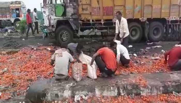 प्याज के बाद अब लोगों ने लूटे टमाटर, ग्रामीणों के साथ राहगीरों ने भी साफ किए हाथ