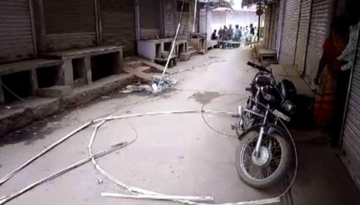 सवाई माधोपुर: बंदरों के झगड़े में सड़कों पर बिछ गए बिजली के तार